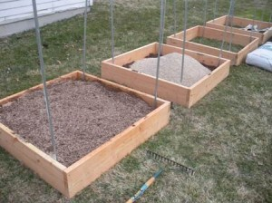 Soil - Early Mix